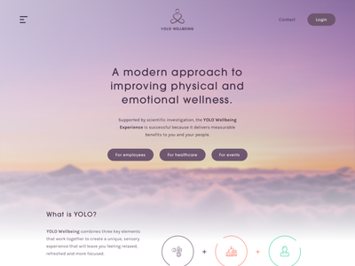 Yolo Homepage web design wordpress theme sketch