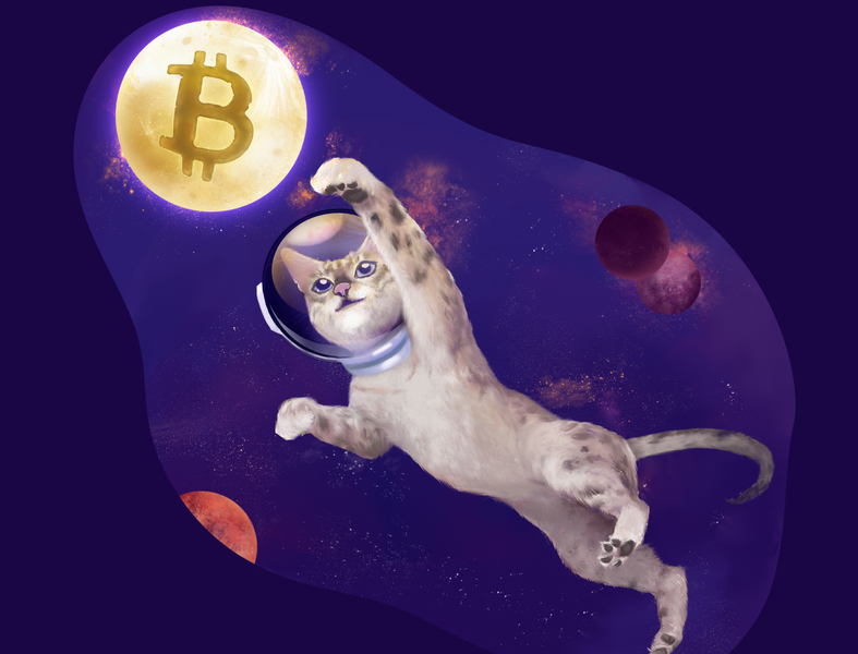 Amazing cat reaching for the unknown [financial structures] mining cryptography decentralized digital currency planets fluffy paw bitcoin moon stars cosmos helmet spacesuit space cat illustration