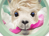 Detailed sudden llama