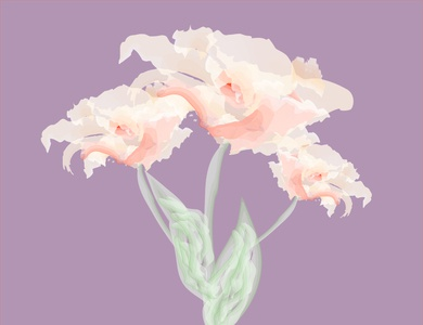 Abstract flower illustration design