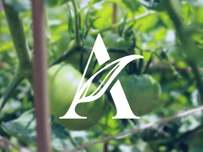 Green A tomatoes natural icon identity branding logo a greenery vegetables
