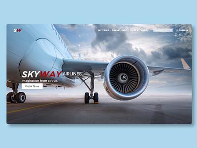 SkyWay Airlines (Web Design) branding web website ux ui design