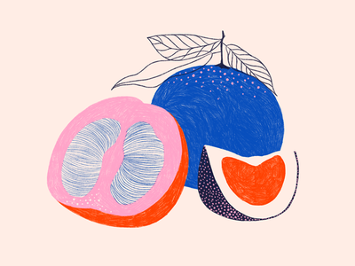 Fruit & Line Series: Pomelo