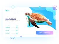 Turtle Landing Page