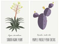 AZ Plants