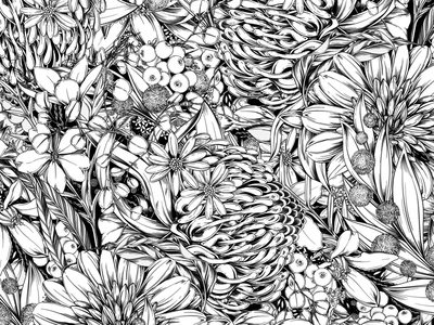 Tropical Monochrome Illustration nature lettering black and white pattern branding botanical illustration packaging surface design botanical illustration
