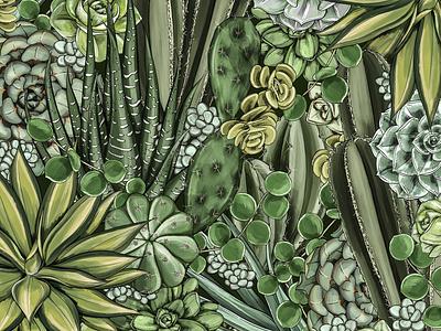 Succulent Illustration digital art procreate color palette line art surface pattern print design print nature floral surface design packaging botanical pattern illustration