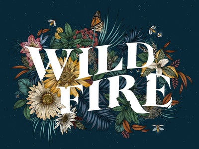 Wild Fire for Procreate 4 launch