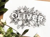 Oliver - ink illustration