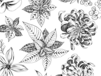 Floral Spot Illustrations