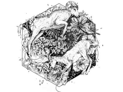 Ram Ink Illustration