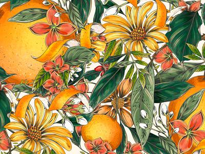 Orange Twist Illustrated pattern design botanical illustration flowers nature drawing packaging typography botanical pattern illustration