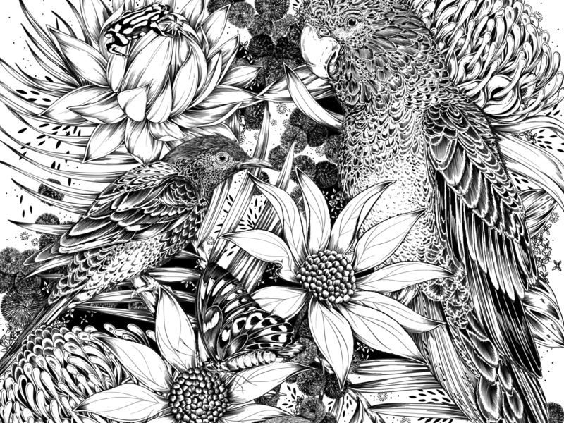 Detail: Australian Bushfire Fundraiser australia bird black and white drawing botanical illustration surface design packaging botanical pattern illustration