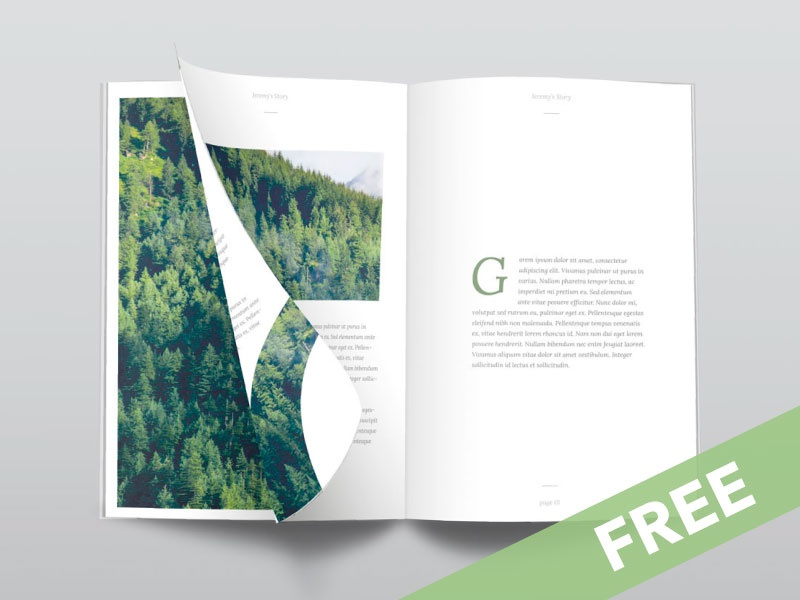 Free Psd Magazine Mockup Top View Dribbble