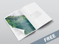 Free Isometric A4 PSD Magazine Mockup