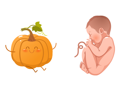 Miracle of life. 9th month embryo people vector art vector fertility baby pumpkin pregnancy