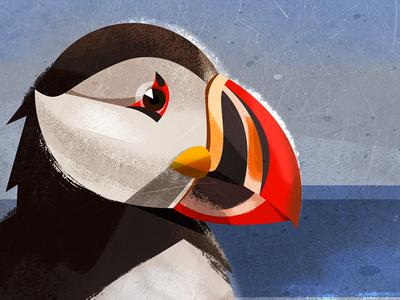 Birdie for avatar