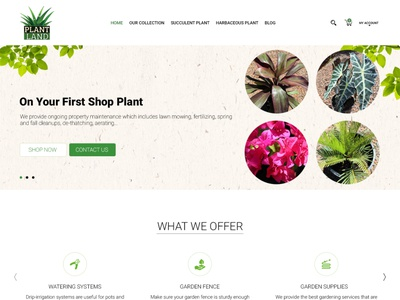 Plant land Mockup business web vector animation brand identity website branding graphic design design