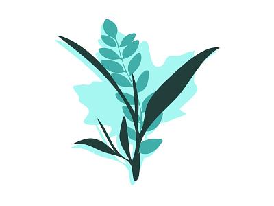 Leaf plant illustration leaves leaf design vector