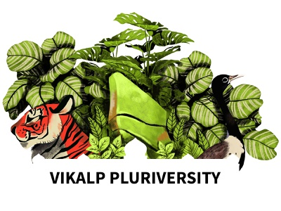 Vikalp Pluriversity ui socialmediapost poster creative graphicdesign digitalillustration design vector illustration