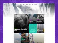 Blog grid page