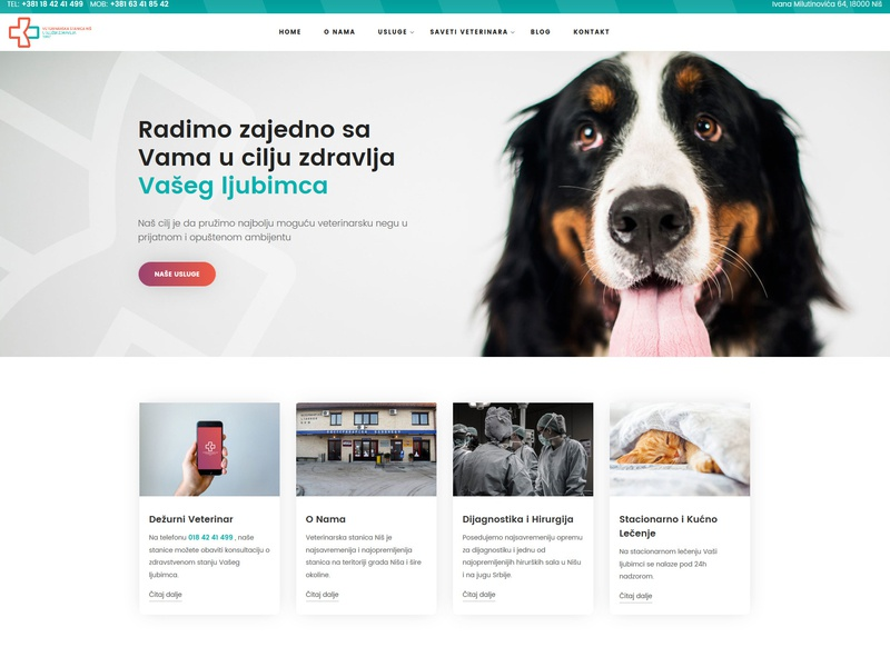 A website for a veterinary clinic petshop pets cat dog doctor ux ui medical veterinary