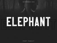 Elephant Font Family - Free Font!
