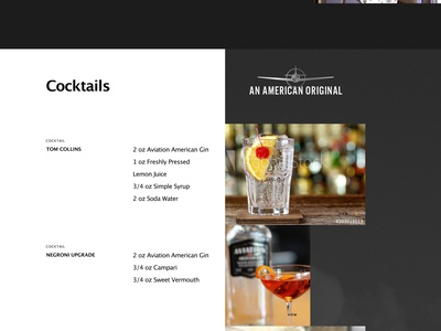 Aviation American Gin Concept Website Redesign redesign website madeinwebflow web design html5 web animation interactions css3 webflow