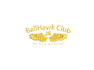 Ballhawk club logo ballhawk logo ballhawk logo hawk club logo hawk logo club logo
