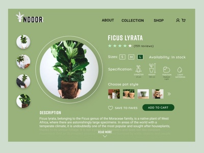 #DailyUI 012 - E-COMMERCE SHOP add to cart details plant shop 012 onepage indoor plants plants ecommerce design ecommerce shop dailyui012 design figmadesign 100daychallenge uidesign ui figma dailyui daily 100 challenge 100daysofui