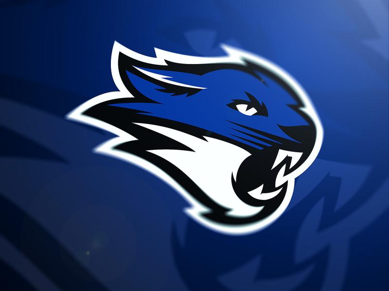 Wildcat Concept vector sports logo mascotlogo logo illustration design branding