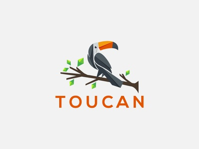 toucan logo icon animation design branding game logo app ux illustration ui toucan bird toucans toucan