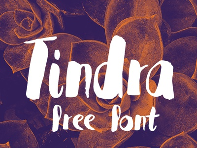 Tindra Free Font  free handmade handwrite brush webfont type freefont font freebies freebie