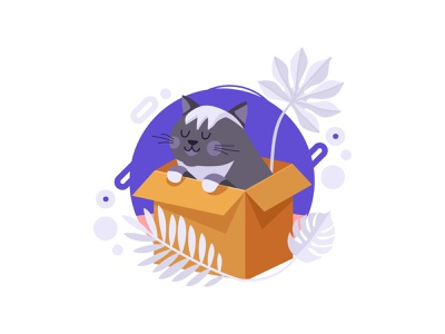 Cat in the box minimal creative box cat flat concept character vector design art illustration