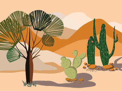 DESERT digital painting drawing illustration poster illustrator vector flat desert desert illustration