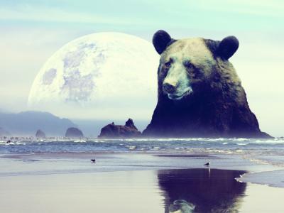 bear mountain surrealism photography photo manipulation
