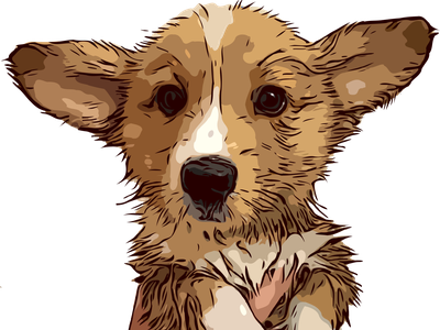 Good boy 1 portrait illustration illustrator illustration procreate commission cute pet animal