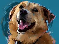 Gus - Pet Portrait Commission