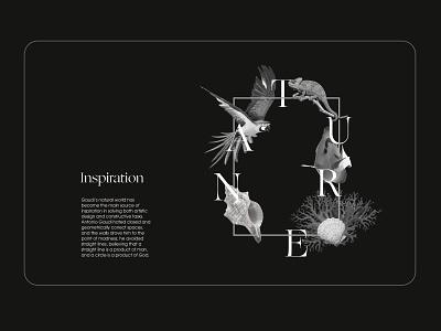 concept site Antonio Gaudi app ux ui uidesign uiux concept sketch illustration site