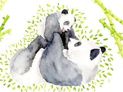 Mother and baby panda watercolor panda bear parents love baby mothersday mother bear panda traditional painting illustration watercolor animalillustration