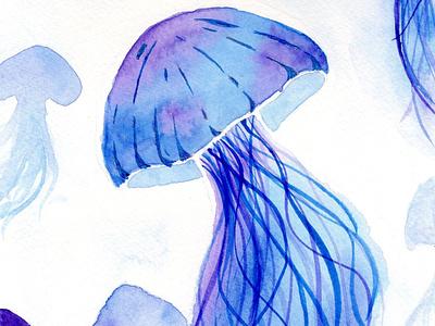 Jellyfish watercolor beautiful jelly fish ocean animalillustration illustration painting elegant watercolor jellyfish