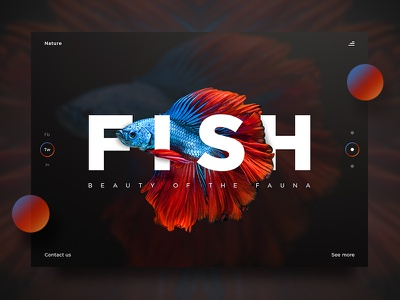 Fish UI nature fish website ux ui product photography page landing design beauty art