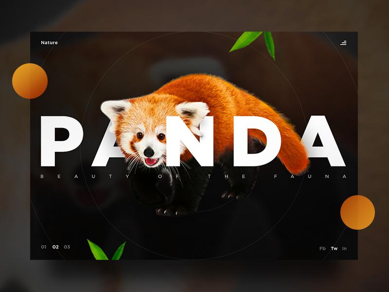 Panda UI website ux ui product photography page nature landing panda design beauty art