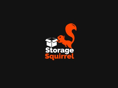 Logo Design for Online Storage Comapny