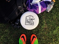 Ultimate Frisbee Summer League Logo - Game Disc