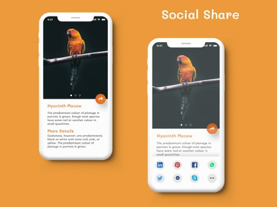 Social Share uidesign appdesign webdesign ui design dailyui ux figma uiux