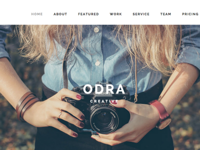 Screencapture Demo Nrgthemes Com Projects Odrawp Onepage 1451921