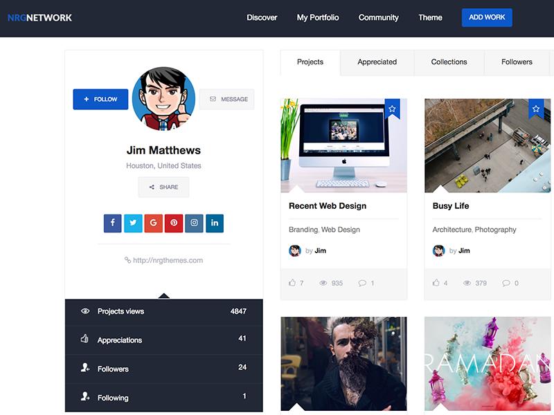 Nrgnetwork Responsive Social Network WordPress Theme Web Design Networking