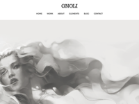 Portfolio WordPress Theme - Gnoli