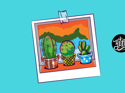 cactus photos photo cactus design cute illustration